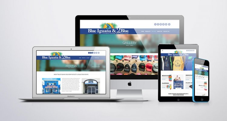 Blue Iguana Website Design